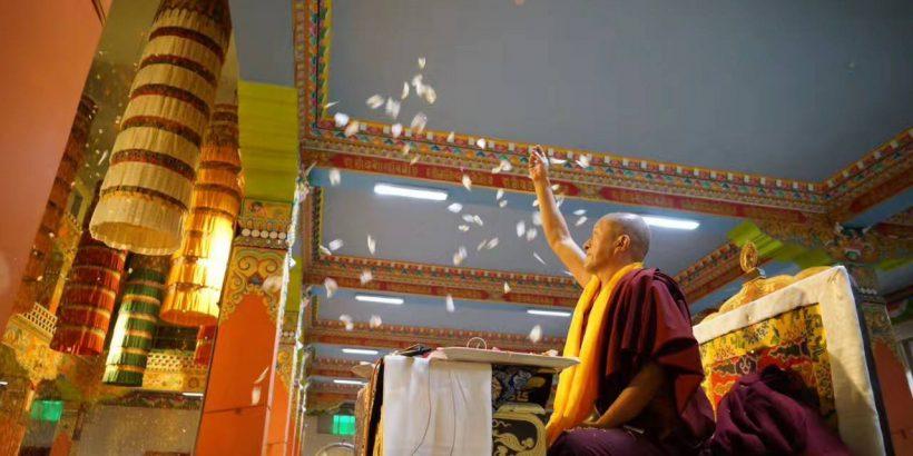Dzongsar Rinpoche 34